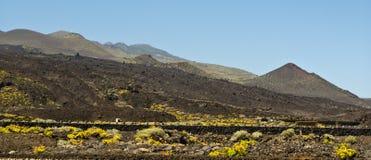 Teneguia volcan waaier, het eiland van La Palma Stock Fotografie