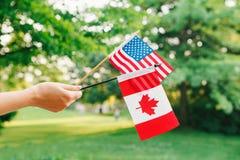 Tenencia de brazo de mano que agita banderas canadienses y americanas en Forest Park verde Foto de archivo libre de regalías