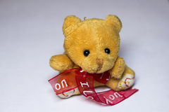 Tenencia de Teddy Bear fotografía de archivo