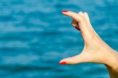 Tenencia femenina vacía de la mano de la mujer Imagen de archivo