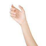 Tenencia hermosa de la mano de la mujer aislada en blanco imágenes de archivo libres de regalías