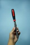 Tenendo un rosso raspa Fotografia Stock Libera da Diritti