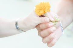 Tenendosi per mano con un fiore fotografia stock libera da diritti