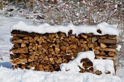 Tenendovi riscaldi nell'inverno Fotografie Stock