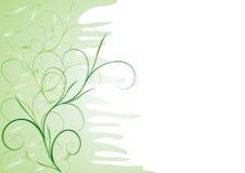 Tenerezza verde illustrazione di stock