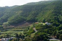 tenerife Κανάρια νησιά tenerife Ισπανία στοκ φωτογραφία με δικαίωμα ελεύθερης χρήσης