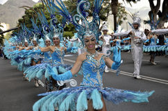 TENERIFE, ΣΤΙΣ 17 ΦΕΒΡΟΥΑΡΊΟΥ: Χαρακτήρες και ομάδες στο καρναβάλι Στοκ Εικόνα