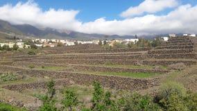 Tenerife immagine stock libera da diritti