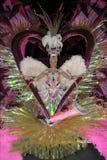 TENERIFE, 17 DE FEBRERO: Candidato al carnaval Quee Fotografía de archivo libre de regalías