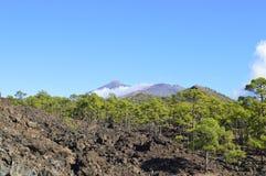 Tenerife Foto de archivo libre de regalías