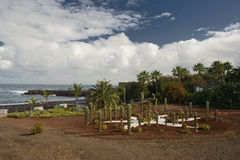 Tenerife Fotografia Stock Libera da Diritti