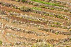 Tenerife Canarische Eilanden, isole Canarie di Tenerife immagine stock libera da diritti