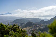 Tenerife. Canary Islands. Spain. stock image