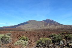 Tenerife royalty free stock images