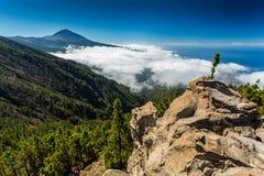 Tenerife en Gr Teide Stock Fotografie