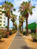 Tenerife, España Imagenes de archivo