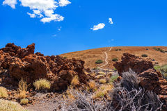 tenerife för kanariefågelöteide vulkan Arkivbild
