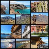 Tenerife Stock Photo