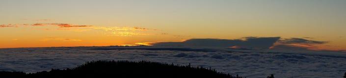 Tenerife kanariefågelöar Royaltyfri Fotografi