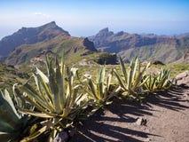 Tenerife landscape Royalty Free Stock Images