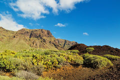 Tenerife landscape Stock Photo