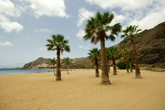 Tenerife: Las Teresitas beach Royalty Free Stock Photo