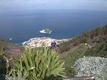 Tenerife, mountain Royalty Free Stock Photo