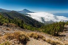 Tenerife och El Teide Arkivbild