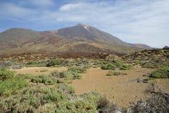 Tenerife parque Nacional el Teide Arkivfoto