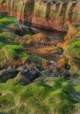 Tenerife, scena wokoło Playa Colmenares, krajobraz zdjęcie stock