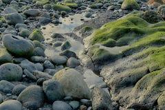 Tenerife, scena wokoło Playa Colmenares, krajobraz zdjęcia stock
