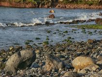 Tenerife, scene around Playa Colmenares, landscape royalty free stock images
