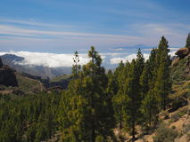Tenerife seen from high mountain next to Roque Nublo Royalty Free Stock Photos