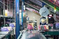 Tenerife, Spain - January 3, 2018 : Conveyor belt in Banana factory packaging line in Tenerife, Canary islands, Spain. royalty free stock photos