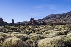 Tenerife, Teide Fotografia Stock