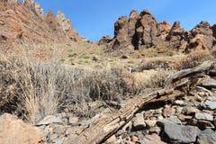 Tenerife - Teide National Park royalty free stock photo