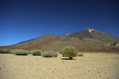 Tenerife Teide Nationalpark Royalty Free Stock Images
