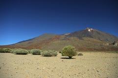 Tenerife Teide Nationalpark Royalty Free Stock Images