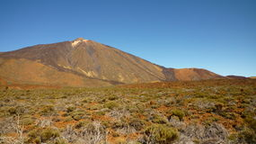 Teide - Tenerife Arkivbild