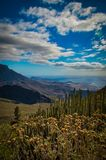 Tenerife - a view from a mountain. Sea, sky, cactuses stock photos