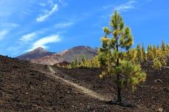 Tenerife volcano teide landscape Stock Photos