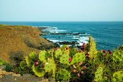 Tenerife wild coast in Hidalgo Royalty Free Stock Photography