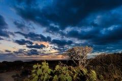 Teneriffa-Landschaft - Costa Adeje-Sonnenuntergang Stockfoto