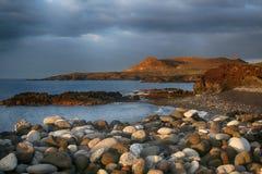 Teneriffa, Szene um Playa Colmenares, Kakteen und Landschaft lizenzfreies stockbild
