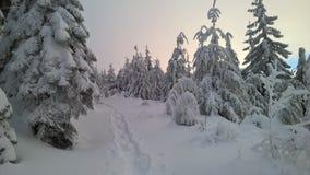 Teneriffe山在冬天 免版税库存照片