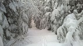 Teneriffe góra w zimie obrazy stock
