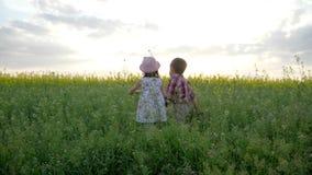 Tenersi per mano di camminata sveglio del ragazzo e della bambina, bambini al campo con i fiori, gioco del bambino in parco verde archivi video