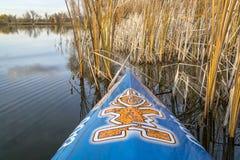 Tenez le paddleboard sur un lac de palourde Images stock