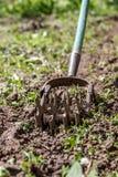Tenez le premier rôle le cultivateur de main pour travailler le sol, sarclez le jardin Le concentré photographie stock