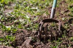 Tenez le premier rôle le cultivateur de main pour travailler le sol, sarclez le jardin Le concentré photos stock